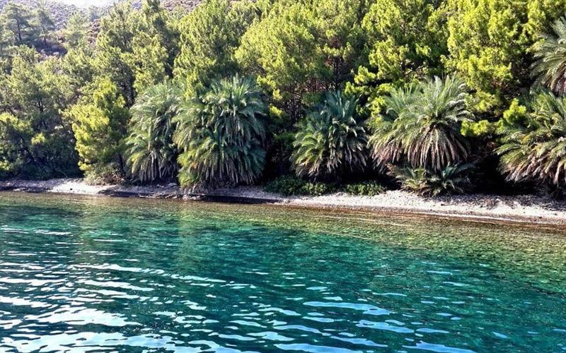 Selimiye Tekne Turları